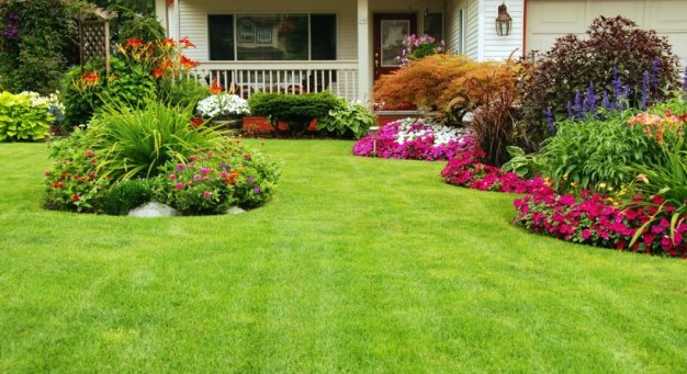 lawn maintenance business plan
