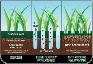 soil_aeration